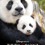Celebrating #BornInChina With Pandas From Our @NationalZoo & The New @DisneyNature Movie! #washingtondc