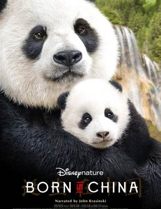 Celebrating #BornInChina With Pandas From Our @NationalZoo & The New @DisneyNature Movie! #washingtondc