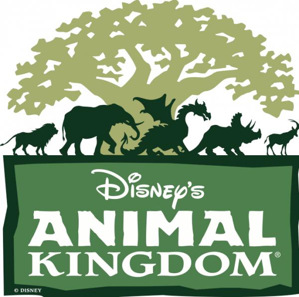 Animal Kingdom Rocks at @WaltDisneyWorld!
