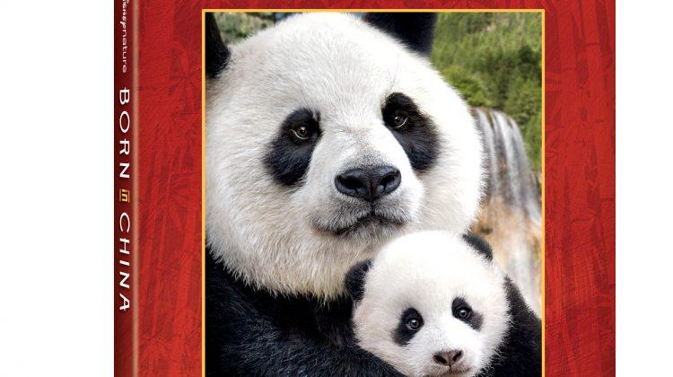Giveaway – @Disneynature's Born In China! The Animal Shots Are Incredible! #BornInChinaBluray