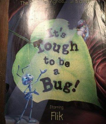 Bug Performers @WaltDisneyWorld, w/Linky! #disneysmmc #disneysmmoms #travel