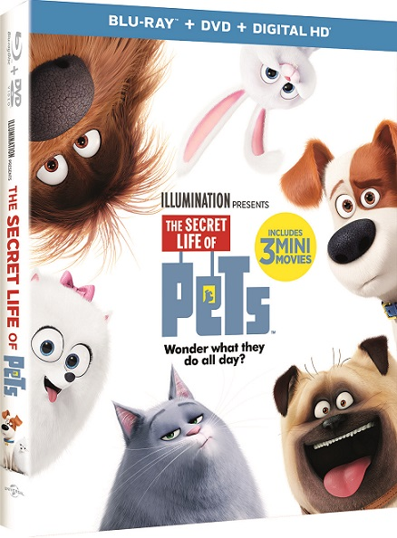 """""""The Secret Life of Pets"""" Combo Pack!"""
