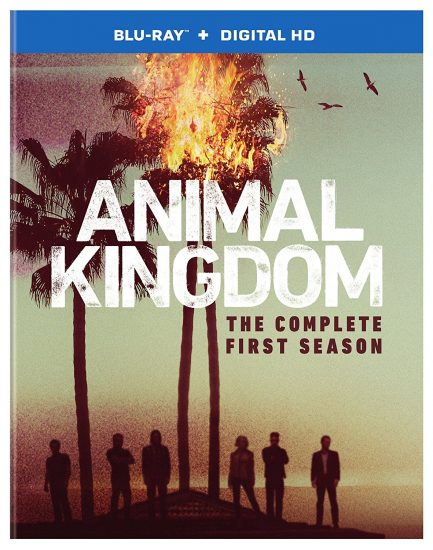 TNT's #1 New Series ANIMAL KINGDOM: THE COMPLETE FIRST SEASON on Blu-ray!