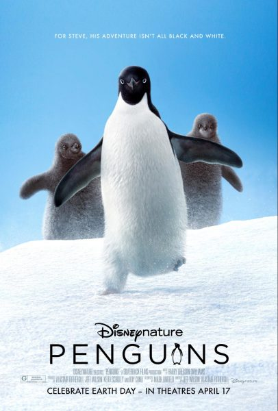 Disneynature Penguins Opens Today!