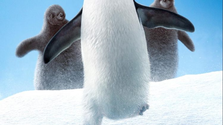 Disneynature Penguins Opens April 17th & Is A Must See Movie! #DisneynaturePenguins @Disneynature