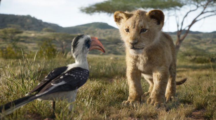 The Lion King Is Here On July 19th! #TheLionKing @DisneyLionKing